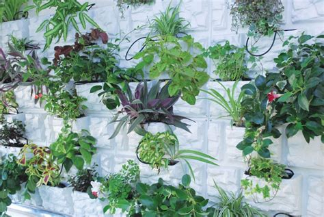 palram plantscape vertical garden the home