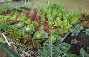 The vegetable garden ideas for your gardening inspiration actual