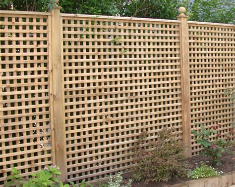 Privacy Fence With Trellis Related Keywords Suggestions For Privacy Trellis