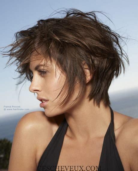 coupe rond cheveux 233 pais