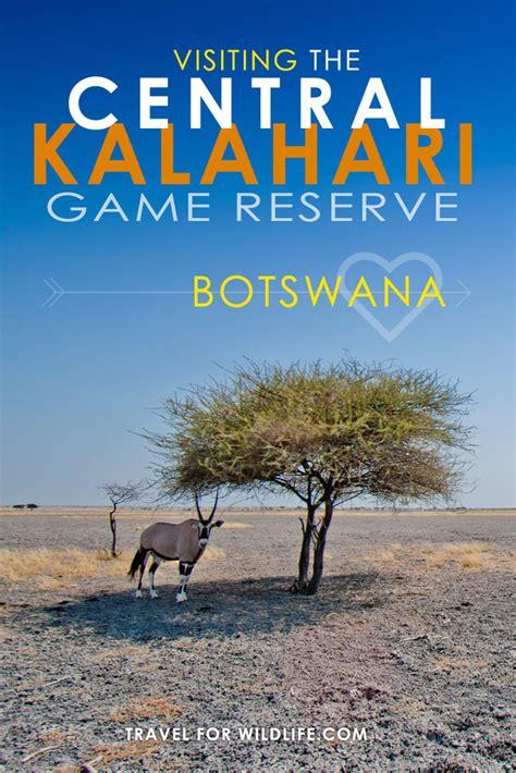 traveling   central kalahari game reserve botswana
