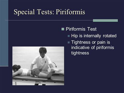 test piriforme chapter 21 the thigh hip groin and pelvis ppt