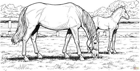 coloring pages of horses for adults coloring pages coloring pages for adults printable
