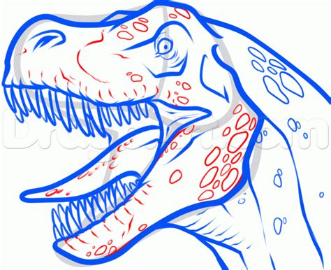 Drawing T Rex Step By Step by How To Draw A T Rex Step By Step Dinosaurs Animals