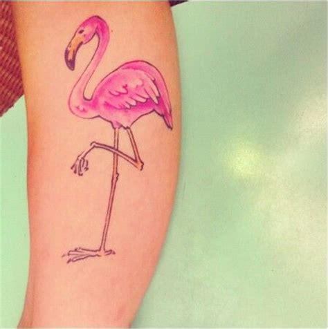 pink flamingo tattoo 257 best images about tattoos on