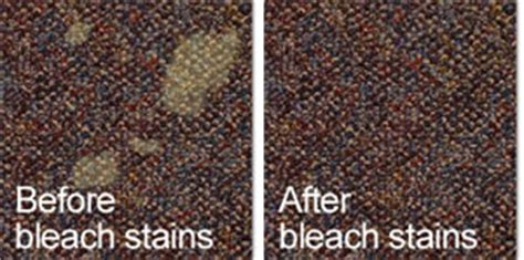 carpet dyeing and carpet cleaning in boston dye rite
