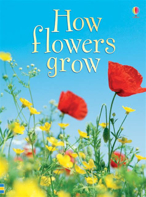 flower picture book how flowers grow at usborne books at home