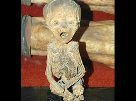 imagenes momias egipcias momias youtube