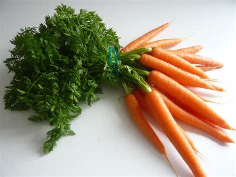 cuisiner fanes de carottes cuisiner les 233 pluchures l de manger