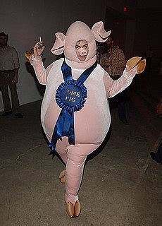 Baby Fashionologie by Best 25 Pig Costumes Ideas On Pig