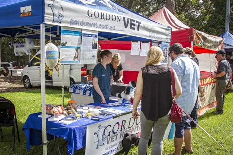 dogs day out joey s event of the week s day out gordon vet