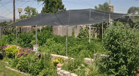 Studio 5 Garden In A Box Beat The Heat Garden Shade Cloth Shade Cloth Vegetable Garden