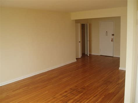 government section 8 nyc apartments for rent nyc section 8 government assisted