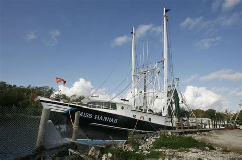 shrimp boat jobs in jacksonville fl warm weather will bring alabama an early shrimping season