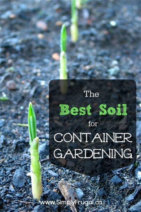 what is the best soil for container gardening the best soil for container gardening