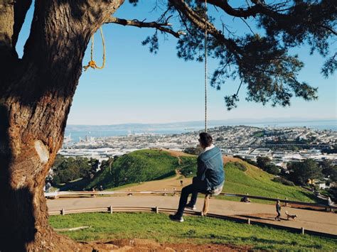san francisco swing the 5 best tree swings in san francisco and nearby