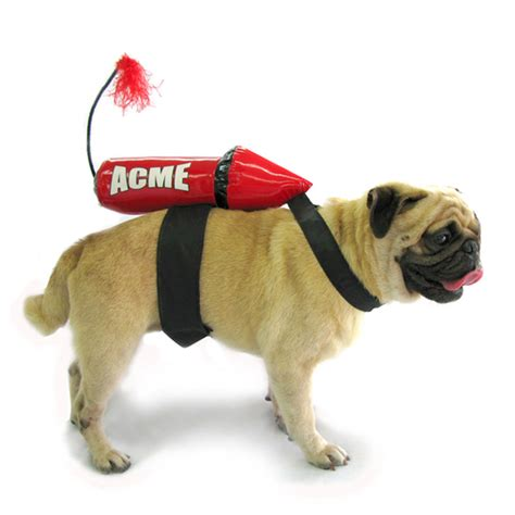 rocket dogs acme rocket costume baxterboo