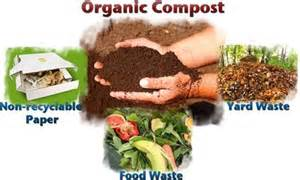 How To Plant A Vegetable Garden In Your Backyard Thinking Of Starting A Compost Pile Giordanos