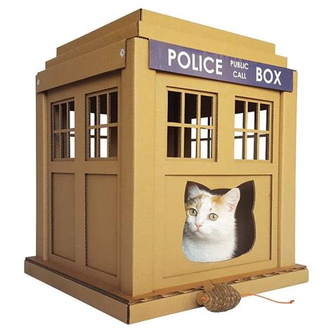tardis cat houses shoebox dwelling finding comfort