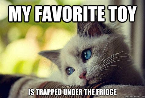 Cat Problems Meme - my favorite toy is trapped under the fridge first world