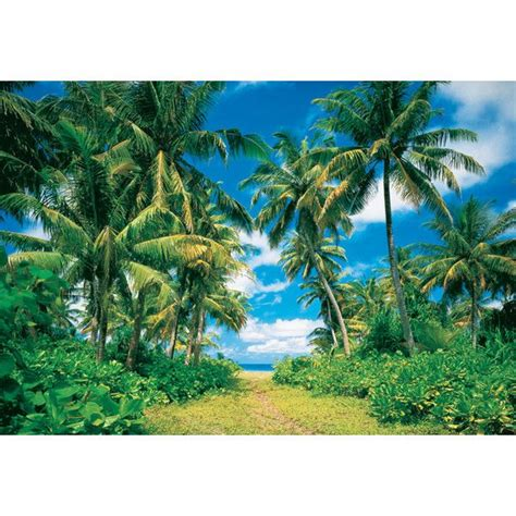 palm tree wall mural palm tree path wall mural polyvore tropical