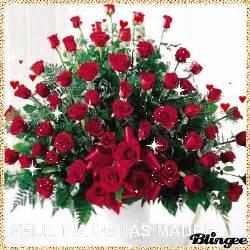 imagenes de rosas rojas para una madre im 225 genes de feliz d 237 a de las madres en movimiento con