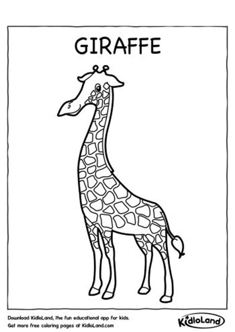 christmas giraffe coloring pages giraffe coloring page free printables for your kids