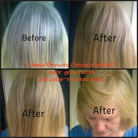 coloring hair with henna best 25 grey hair ideas on grey