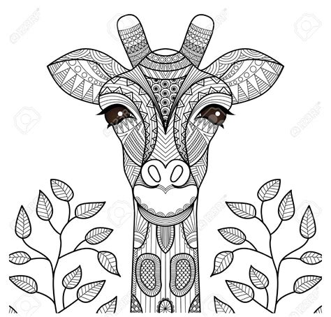 imagenes de jirafas coquetas zentangle giraffe head for coloring page shirt design and