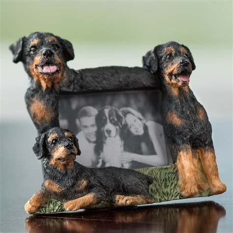 small rottweiler small rottweiler magnet picture frame pins magnets basic craft supplies craft