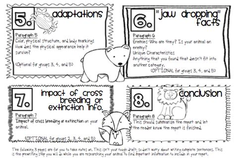 Animal Report Template For Kids