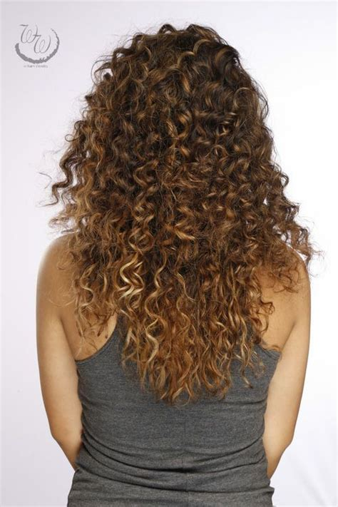 brown curly hair with highlights 350 best hair color love images on pinterest latest