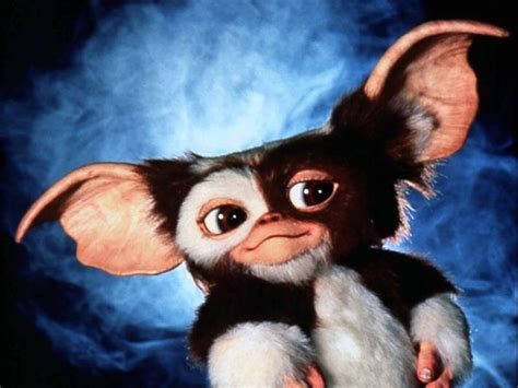 gizmo gremlins wallpaper  pictures