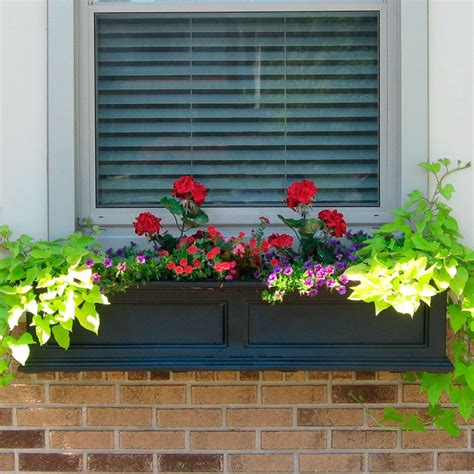 Planter Boxes Window by Outdoor Planter Boxes Window For Beautiful Home