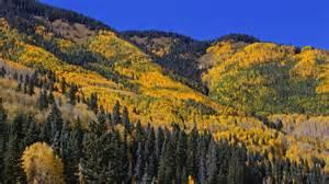 fall colors fall foliage along highway 550 neihtn