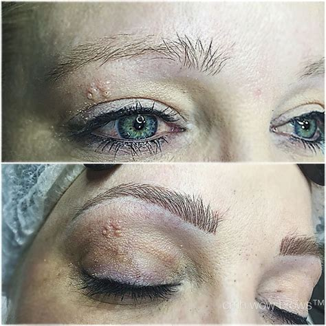 tattoo eyebrows touch up natural eyebrow tattooing hair stroke feather touch