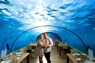 underwater bedroom in maldives ithaa the underwater restaurant in the maldives