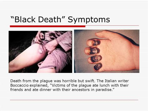 dying symptoms the black plague ppt