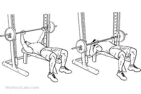 smith machine decline bench press smith machine chest press workoutlabs