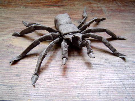 origami tarantula tarantula goliat
