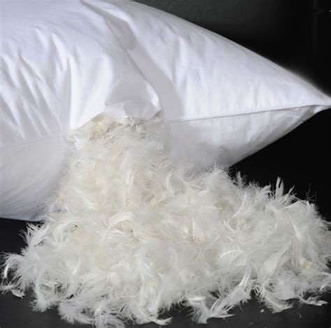 and feather pillow aliexpress buy soft luxury feather pillow decoration