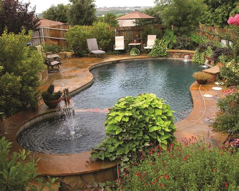 cool backyards with pools 100 cool backyards with pools backyards fascinating