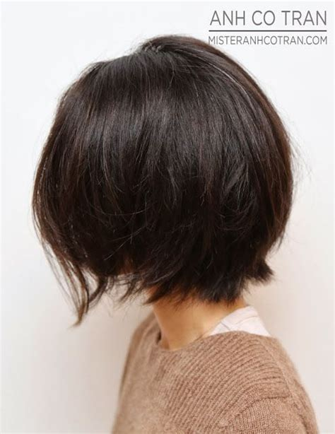 mister anh co tran short hair 1000 ideas about short brown haircuts on pinterest
