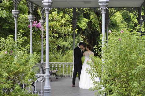 botanic garden wedding photoshoot pre wedding photoshoot experience 37