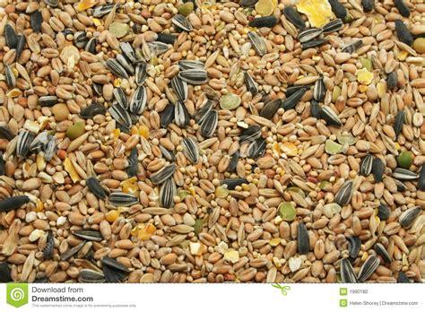 mixed bird seed stock photo image 1990180