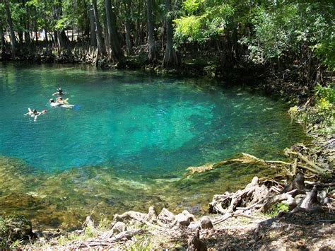 silver bay mn boat tours 15 florida swimming holes you have to visit this summer
