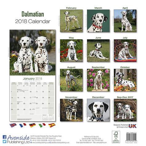 Calendrier Chien 2018 Calendrier 2018 Dalmatien