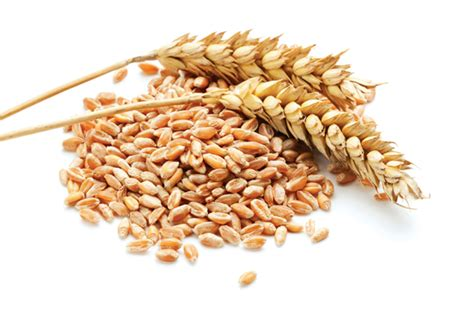 whole grains reduce inflammation the healthy way to reduce inflammation well being magazine