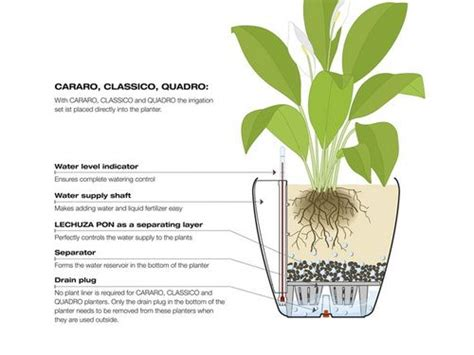 affordable self watering planter lets you grow a countertop garden 1000 images about self watering pots on pinterest herb