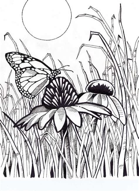 difficult butterfly coloring pages difficult coloring pages for adults bing images art